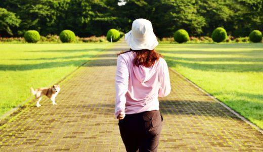 【歩けない人もダイエットできる方法】歩いたり運動せずに痩せるには?